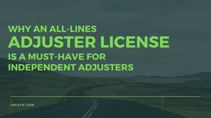 all lines adjuster license
